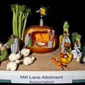 1 Mill Lane Allotment Association